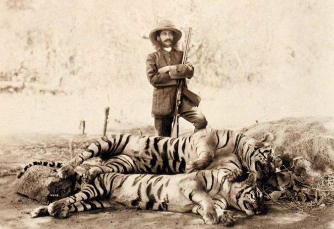 Sua Alteza, o Nizam, com tigres abatidos. Nekonda, 1894.